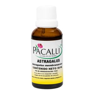 Astragalus / 30 ml
